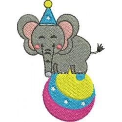 Elefantinho do Circo