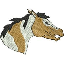 Cavalo 33