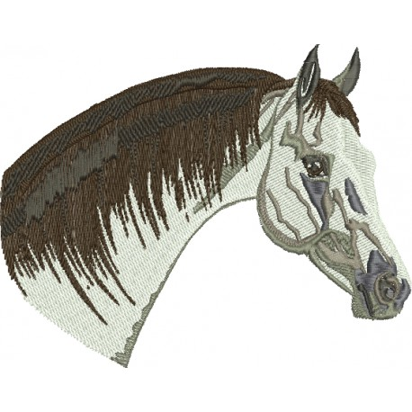Cavalo 34
