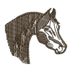 Cavalo 36
