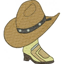 Botas de Cowboy 03