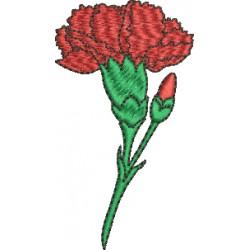 Flor 53