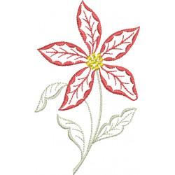 Flor 62