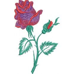 Flor 63