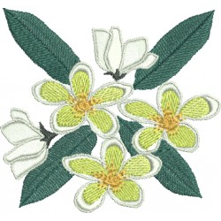 Flor 248