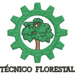 Técnico Florestal 01