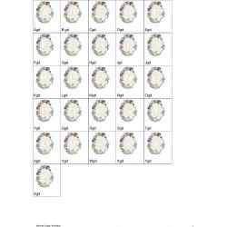 Alfabeto Flores 5 Completo (A-Z)