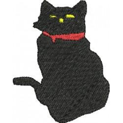 Gato 14