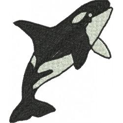 Baleia 03