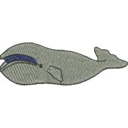 Baleia 08