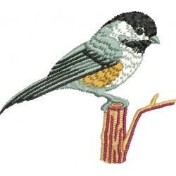 Pássaro 06