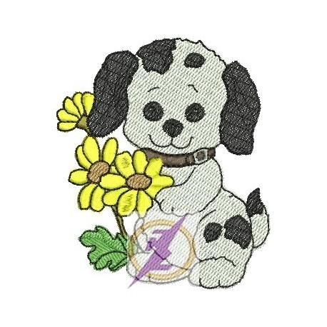 Cão 09