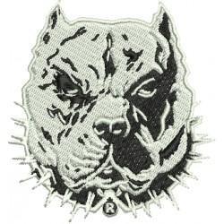 Cão 10