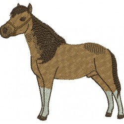 Cavalo 05