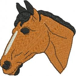 Cavalo 10