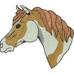 Cavalo 11