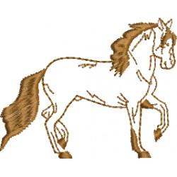 Cavalo 20