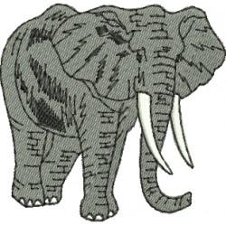 Elefante 13