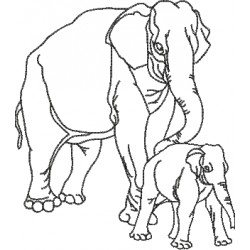 Elefante 20