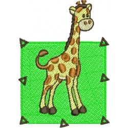 Girafa 11