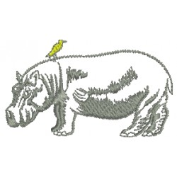 Hipopótamo 09