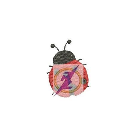 Joaninha 21