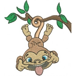 Macaco 10