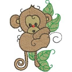 Macaco 03
