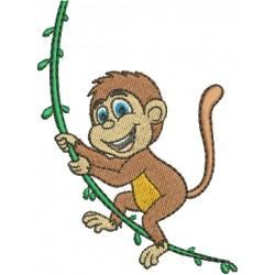 Macaco 08