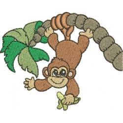 Macaco 09