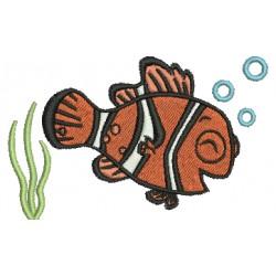 Nemo 12