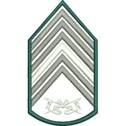 Divisa 1º Sargento Cavalaria Sem Fundo