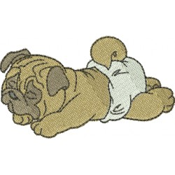 Pug 07
