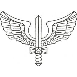 Asa Aeronáutica 02 - Médio