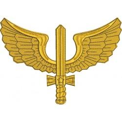 Asa Aéronautica - Grande