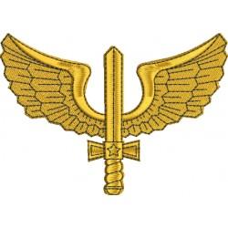 Asa Aéronautica - Médio